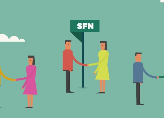 Serie SFN